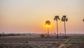 Зона за Kiling Fields на заходе солнца, Пномпень, Камбодже Стоковое фото RF