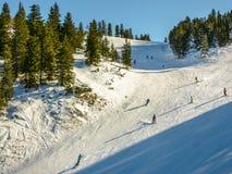 Зона катания на лыжах в Альпах Стоковое Фото