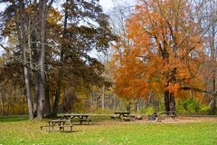 Зона пикника в парке с таблицами и бочонком ожога стоковое изображение