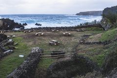 Зона пикника на береге острова стоковые фотографии rf