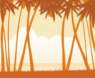 зона путешествия пейзажа тропическая Стоковые Фото
