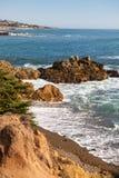Зона пляжа взморья сосен San Simeon Стоковая Фотография RF