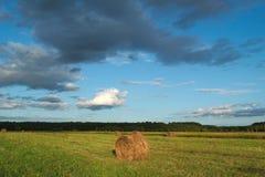 зона Россия haystacks поля krasnodar Стоковые Изображения