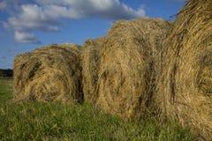 зона Россия haystacks поля krasnodar Стоковое Фото