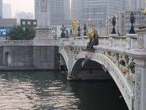 Зона Conmercial столетия Тяньцзиня строя Перемещение в Тяньцзине, хи Стоковое Фото