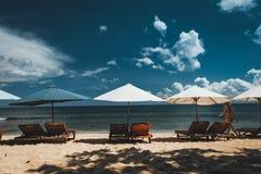 Зонтики вдоль пляжа стоковые фото