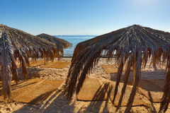 Зонтики и циновки на пляже Стоковое фото RF