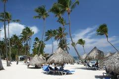 зонтики курорта травы пляжа тропические стоковые изображения rf
