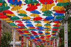 зонтики переулка Стоковые Фото