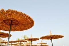 Зонтики солнца красивой соломы естественные в форме шляп и зеленых ладоней в тропической пустыне прибегают, отдыхают против голуб Стоковая Фотография RF