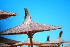 Зонтики Reed стоковое фото