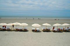 зонтики sc kiawah острова Стоковая Фотография RF