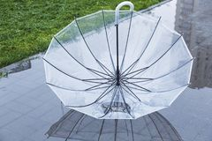 Зонтик в лужице с отражением в воде стоковое фото