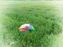 Зонтик в пшеничном поле Стоковая Фотография RF