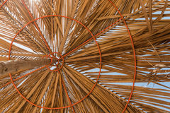 Зонтик в Goa Стоковое фото RF