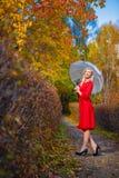 Зонтик деревьев парка падения девушки Стоковое фото RF
