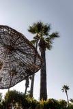 Зонтик и пальма соломы Стоковые Изображения RF