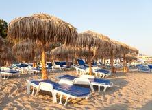 зонтик ладоней стулов пляжа Стоковые Изображения