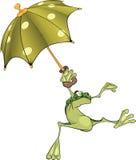 зонтик лягушки Стоковые Изображения RF