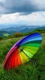 Зонтик много цветов Стоковое Изображение