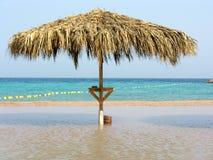 зонтик моря Стоковая Фотография