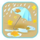 Зонтик, дождь, листья осени Стоковая Фотография