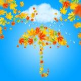 Зонтик от листьев осени Стоковое Изображение RF