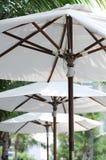 зонтик пляжа стоковая фотография rf