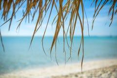 Зонтик пляжа сделанный из листьев ладони на экзотическом пляже Стоковая Фотография