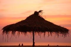 зонтик силуэта ладони листьев Стоковое Фото