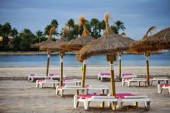 зонтик стулов пляжа стоковое фото