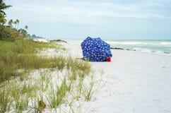 Зонтик, Флорида стоковые фотографии rf