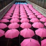 Зонты Стоковые Фото