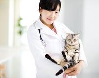 зооветеринарный врач с котом Стоковые Изображения RF