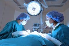 2 зооветеринарных хирурга в операционной Стоковое Изображение RF