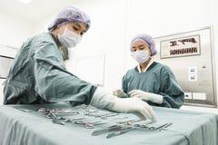 2 зооветеринарных хирурга в операционной Стоковое фото RF