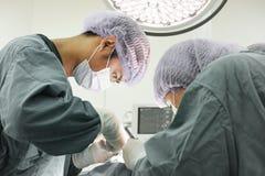 2 зооветеринарных хирурга в операционной Стоковые Изображения RF