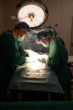 2 зооветеринарных хирурга Стоковые Изображения