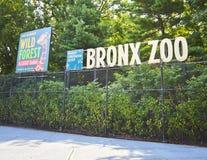 Зоопарк бронкс Стоковое Фото