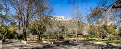 Зоопарк Иерусалима библейский, Израиль Стоковые Изображения RF