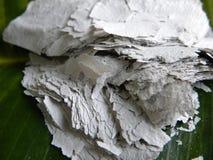 Зола от, который сгорели старой бумаги Стоковая Фотография RF