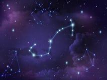 Зодиак звезды созвездия Scorpio Стоковое фото RF