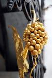 Золотая виноградная лоза на выкованных решетках Стоковое Фото