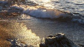 Золотая волна лета Стоковая Фотография