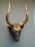 Золотая голова быка, музей Олимпии, Греция Стоковое Изображение