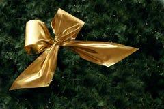 Золотая лента в ели разветвляет с малыми fairy светами для christ Стоковая Фотография