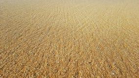 Золотая естественная предпосылка песка Стоковые Изображения RF