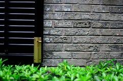 Золотая защелка на черном окне Стоковые Фото