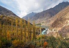 Золотая осень вокруг озера Khalti, город Gupis, долина Ghizer, северный Пакистан Стоковая Фотография RF