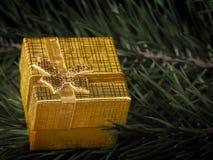 Золотая подарочная коробка стоковые изображения